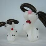 Ballonhunde Dalmatiner
