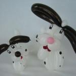 Ballonhunde Dalmatiner Welpen