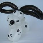 Ballonhund Dalmatiner
