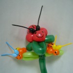 Luftballontiere Kaefer